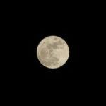 プレミアムフライデーは失敗!?ならば満月の時にこそ早く退社するべき3つの理由/プレミアムフルムーン